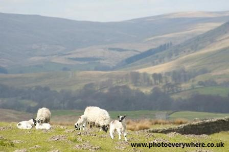 Yorkshire Dales Spring Tour